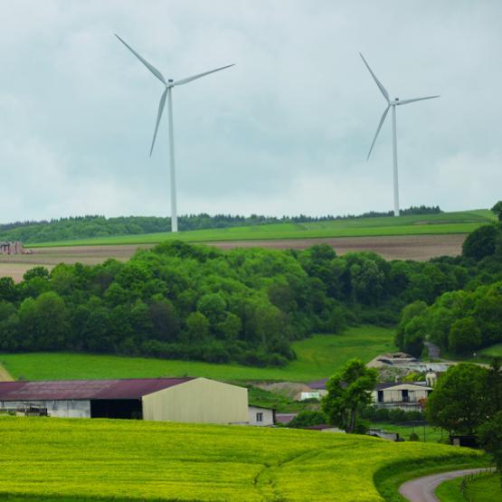 La Haute-Marne a perdu 381 exploitations, soit 16% de ses effectifs agricoles. Photo : DR
